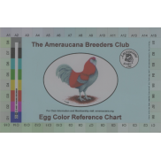 Egg Color Card